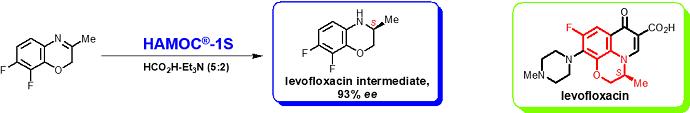 HAMOC 反応例 ベンゾオキサジン類